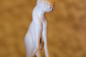 Сенегальский кот